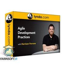 دانلود Lynda Agile Development Practices