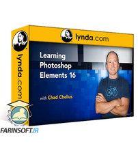 دانلود Lynda Learning Photoshop Elements 2018