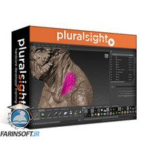 دانلود PluralSight Your First Day Painting Textures in Mudbox