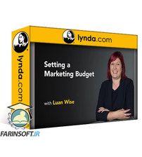 دانلود Lynda Setting a Marketing Budget