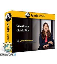 دانلود Lynda Salesforce Tips