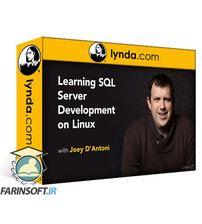 دانلود Lynda Learning SQL Server Development on Linux