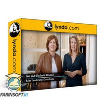 دانلود Lynda Selling into Industries: Financial Services