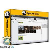 دانلود Lynda Learning Photoshop Elements 15