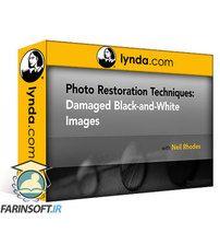 دانلود Lynda Photo Restoration: Damaged Black-and-White Images