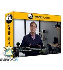 دانلود Lynda Strategic Partnerships