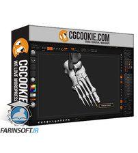 CG Cookie CGMakers Hero Anatomy En Vol.6: Hands and Feet