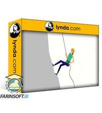 دانلود lynda Working as a Contract or Temporary Employee