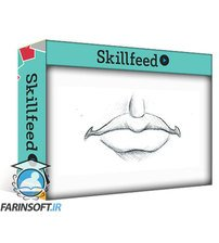 Skillfeed Portrait Drawing Fundamentals Made Simple