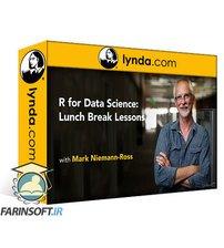 دانلود lynda R for Data Science: Lunchbreak Lessons