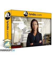 دانلود lynda Program Management for IT Professionals