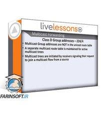 دانلود LiveLessons Fundamentals of IP Multicast (IP Multicast Survival School Series)