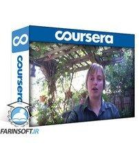 دانلود Coursera Social Network Analysis SNA-004