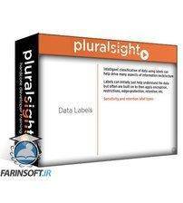 دانلود PluralSight Identify Information Architecture Requirements with Microsoft Azure