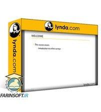 دانلود lynda Learning Online Surveys