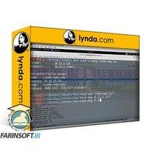 دانلود lynda Security Testing Essential Training