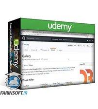 دانلود Udemy Learn and Understand D3.js for Data Visualization