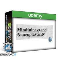 دانلود Udemy Mindfulness and Neuroplasticity