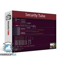 دانلود SecurityTube Pentest Academy ARM Assembly