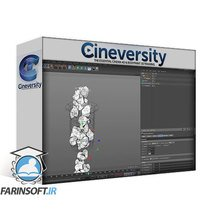 دانلود Cineversity Dynamic Particles & MoGraph