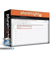 دانلود PluralSight Building Features from Numeric Data