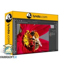 دانلود lynda Cert Prep: Adobe Certified Associate – Photoshop