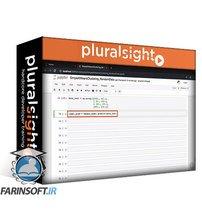 دانلود PluralSight Building Clustering Models with scikit-learn