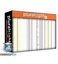 دانلود PluralSight Data Visualization: Best Practices