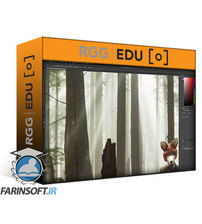 دانلود RGG EDU Essential Photoshop Tools with Sef McCullough