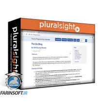 دانلود PluralSight Go: The Big Picture