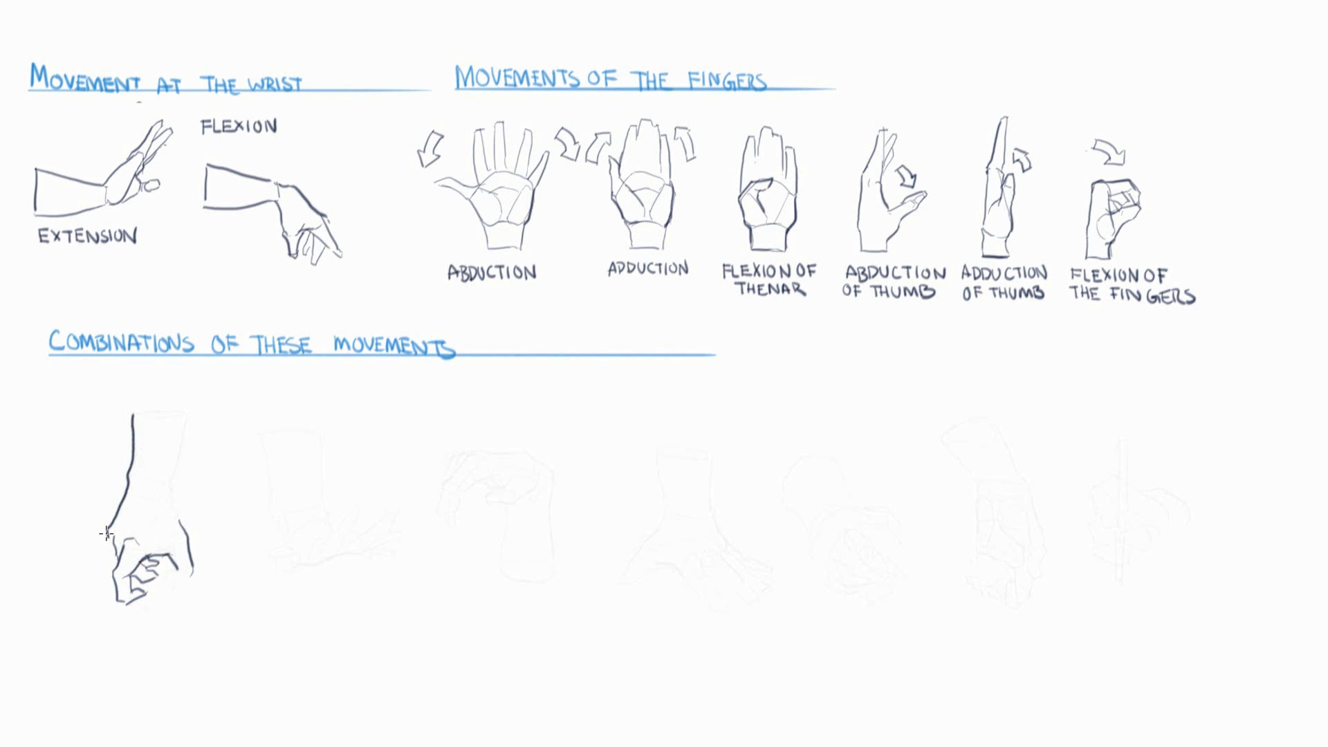 دانلود Gumroad Anatomy Bundle Pack 1