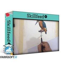 دانلود Skillshare How to Draw a Bird with Colored Pencils