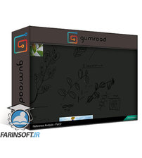دانلود Gumroad Creating Game-Ready Vegetation