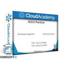 دانلود Cloud Academy Learning Path Cloud Adoption Framework – Cloud Skills for Executive Teams