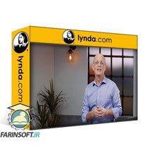 دانلود lynda Developing a Learning Mindset