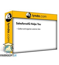 دانلود lynda Salesforce for Small Business