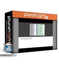 دانلود PluralSight Malware Analysis: Identifying and Defeating Code Obfuscation