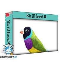 دانلود Skillshare Illustrating Texturey Birds in Procreate