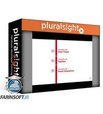 دانلود PluralSight Big Picture: Visual Design