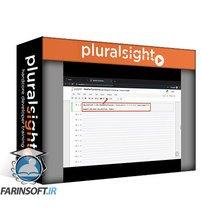 دانلود PluralSight Building Features from Image Data