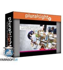 دانلود PluralSight Business Analysis Techniques: Eliciting Information and Collaborating with Stakeholders