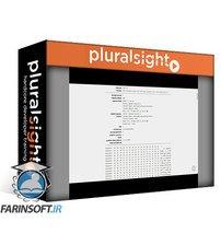 دانلود PluralSight Penetration Testing of Identity, Authentication and Authorization Mechanism