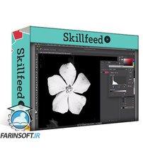 دانلود Skillshare Create Repeating Patterns with Photoshop