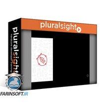 دانلود PluralSight Visual Composition and Layouts