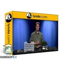 دانلود lynda Audio for Video: 3 Real World Solutions