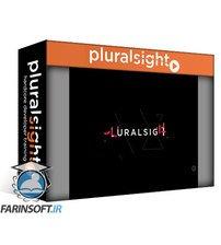 دانلود PluralSight Vue.js Playbook