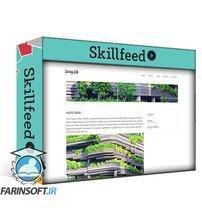 دانلود Skillshare How To Create A Business Website With WordPress & ACF