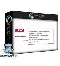 دانلود Stone River eLearning Introduction to Business Analysis