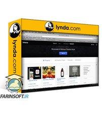 دانلود lynda Planning a Web Design Portfolio: Getting a Job