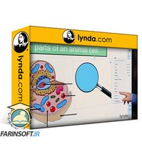 دانلود lynda SMART Board Essential Training